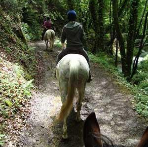 horseriding-(2)