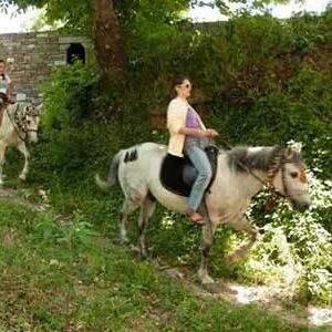horseriding-(3)