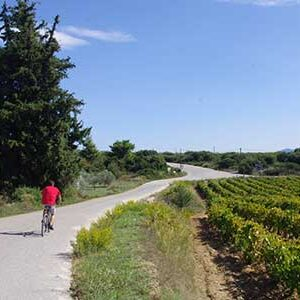 cycling5-5